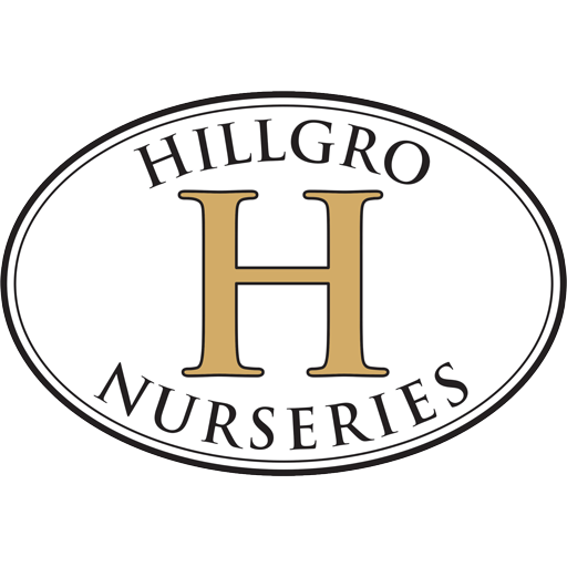 cropped-faVICON-Hillgro-Nurseries-Logo-HiRes.png
