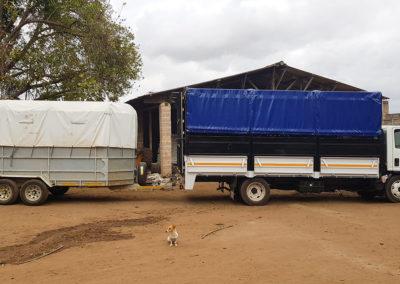 hillgro-macadamia-tree-nursery-sale-kzn-buy-south-africa-Transport truck and tailer