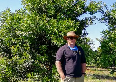 -hillgro-macadamia-tree-nursery-south-africa-T Greg2.5a